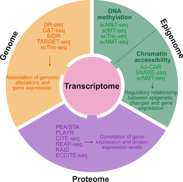 Single-cell multi-omics sequencing