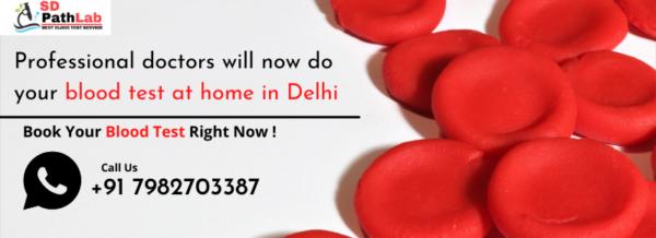 Blood Test At Home In Delhi