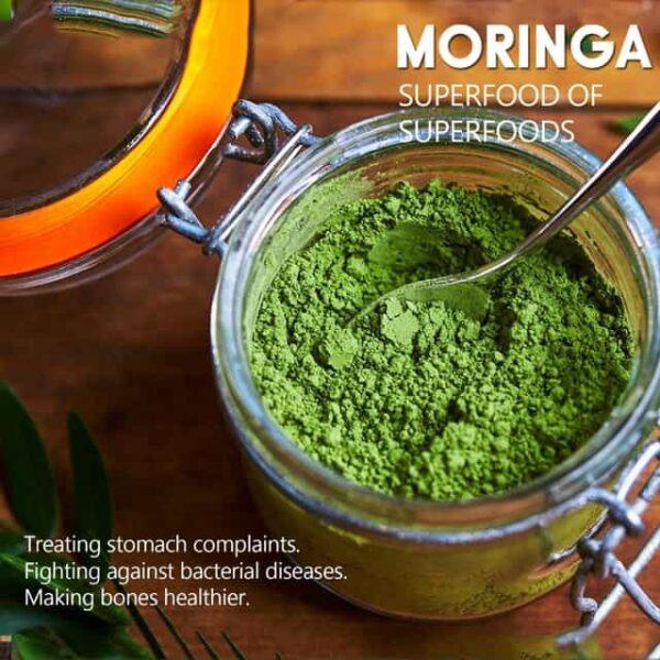 Is Moringa Powder really effective?